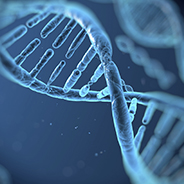 RH GR3: Identification of genetic and epigenetic variation influencing gonadal function