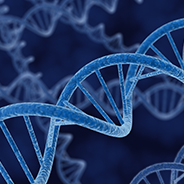 HER3: Age and follicle DNA methylation profile